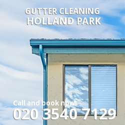 Gutter Cleaning W11