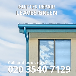 Leaves Green Repair gutters BR2