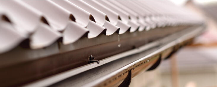 Guttering Cleaning Services CR4