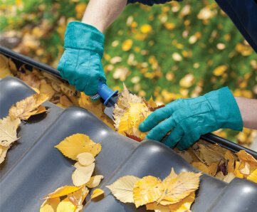 Top Gutter Cleaning Provider